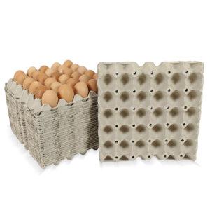 แผงไข่ ถาดไข่กระดาษ