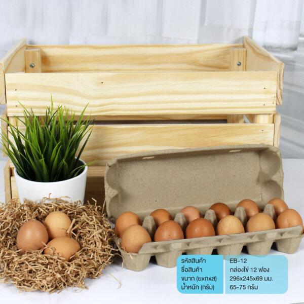 กล่องไข่ แผงไข่ 12 ฟอง