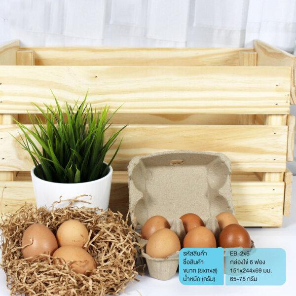 กล่องไข่ แผงไข่ 6 ฟอง