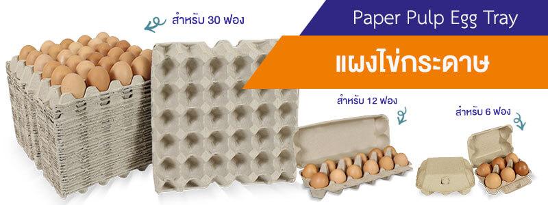 แผงไข่กระดาษ