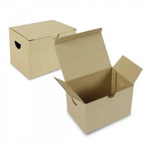 กล่องไก่ทอด / กล่องหมูทอด