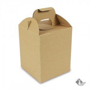 กล่องเมลอน 1 ลูก ขนาด 16.8x16.8x21 cm. (ยxกxส)