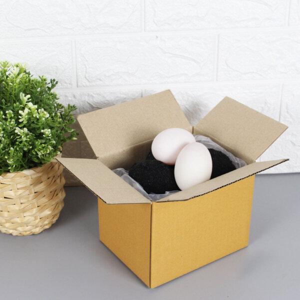 กล่องใส่ไข่เค็ม สำหรับ 10 ฟอง