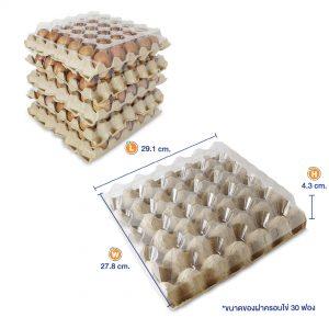แผงไข่+ฝาครอบ-8
