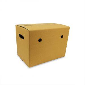 กล่องผลไม้-D+11